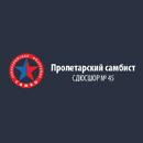 Специализированная детско - юношеская школа №45 Пролетарский самбист