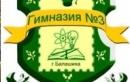 МОУ Гимназия № 3 г. Балашиха